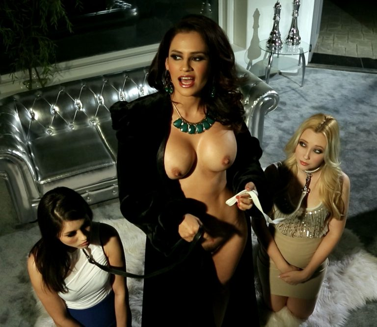 Shyla Jennings, Vanessa Veracruz and Samantha Rone nude in THE BUSINESS OF WOMEN, part 6, The Showdown.