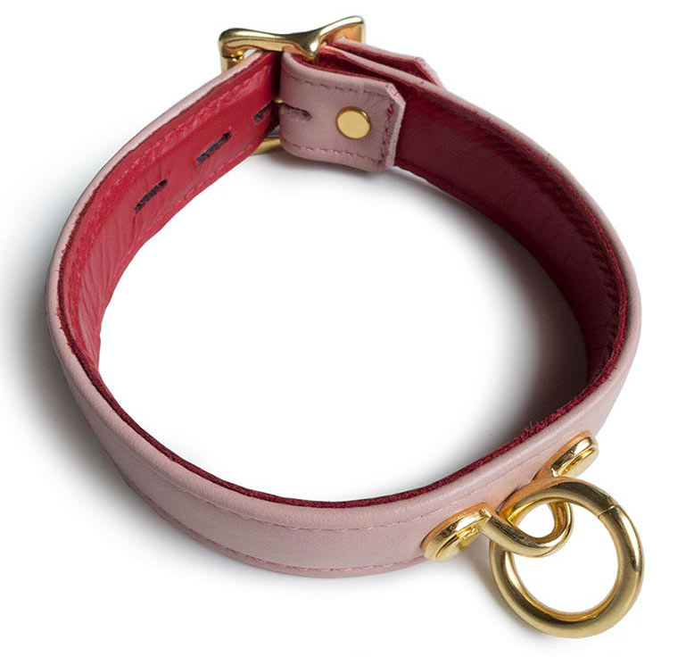 Sex Toys of the Porn stars. Garment Leather Collar with Gold Plated Hardware.